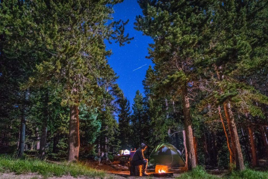 Wild camping in Europe in the forest