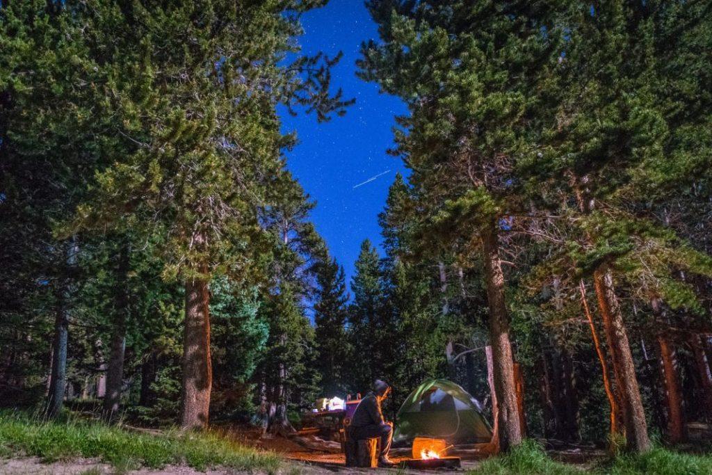 Wildcampen in Europa im Wald