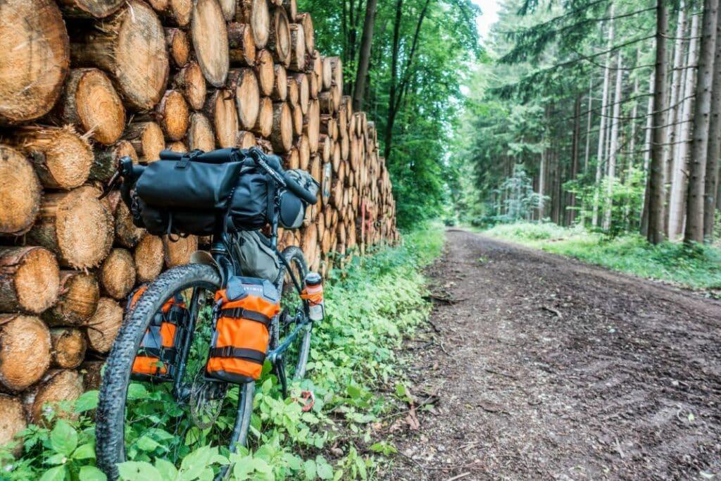 Topeak Bikepacking Taschen Test Erfahrungen Wald