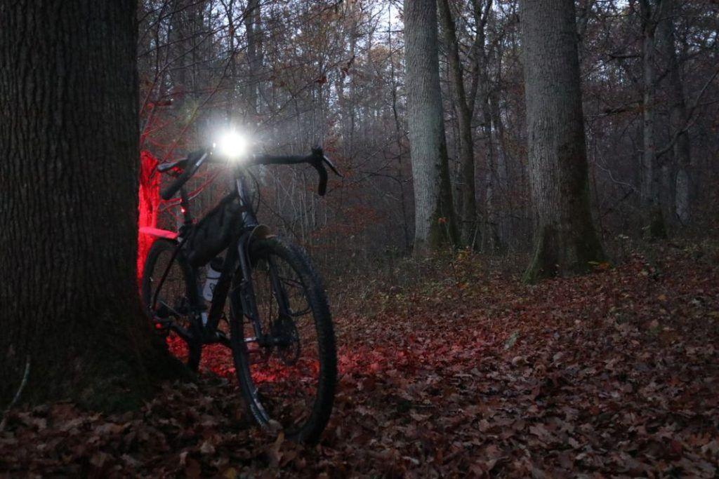 Cateye GVolt 50 Test Leuchtkegel im Wald