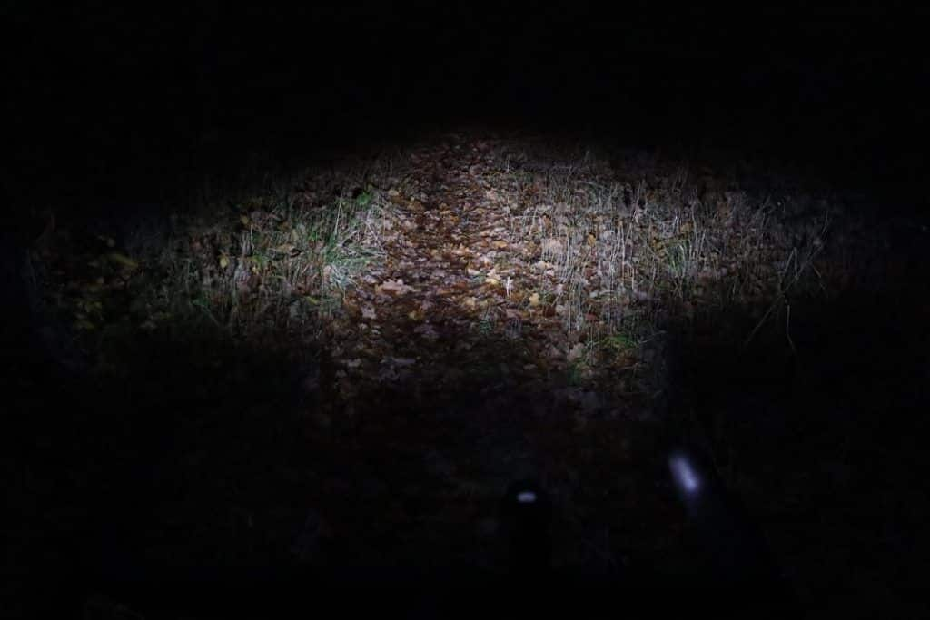 Cateye GVolt 50 Test im Wald Leuchtkraft Fahrradbeleuchtung