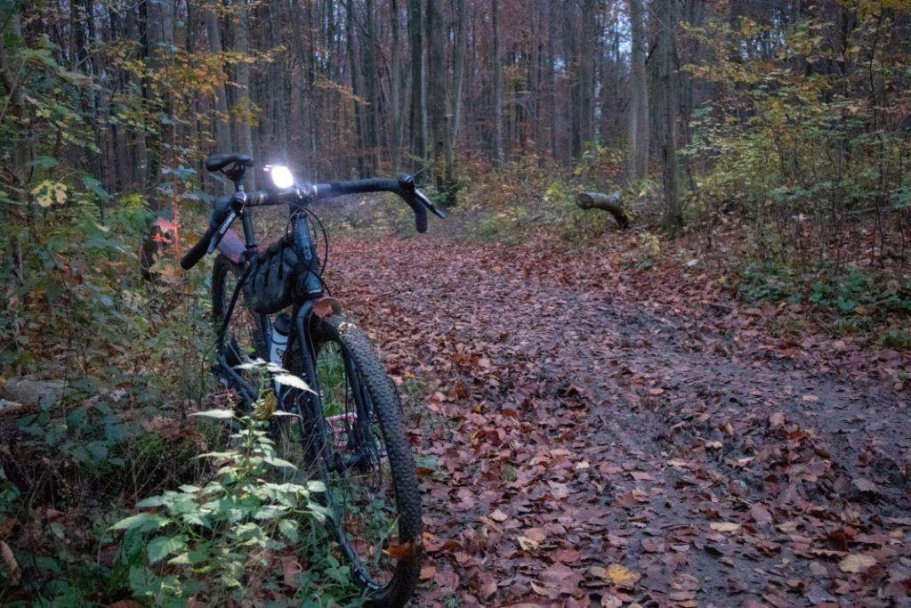 Trelock LS 760 I-GO Vision Test Leuchtkraft LED Fahrradbeleuchtung Wald